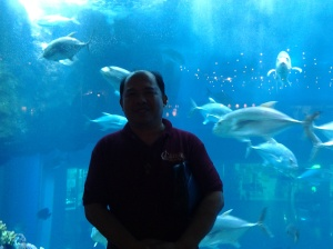 826 Me at Dubai Aquarium-Dubai Mall