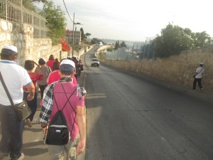 Palm Sunday Road going to Dominus Flevit