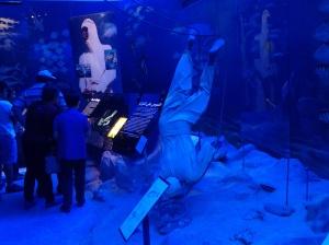784 dubai museum